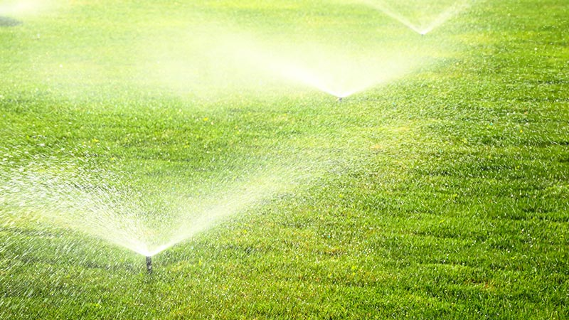 Custom Sprinkler Systems - Denver, CO