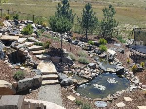 Custom Rock Steps and Waterfall to Poond - Castle Rock, CO