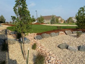 landscaping denver featuring beautiful backyard designs