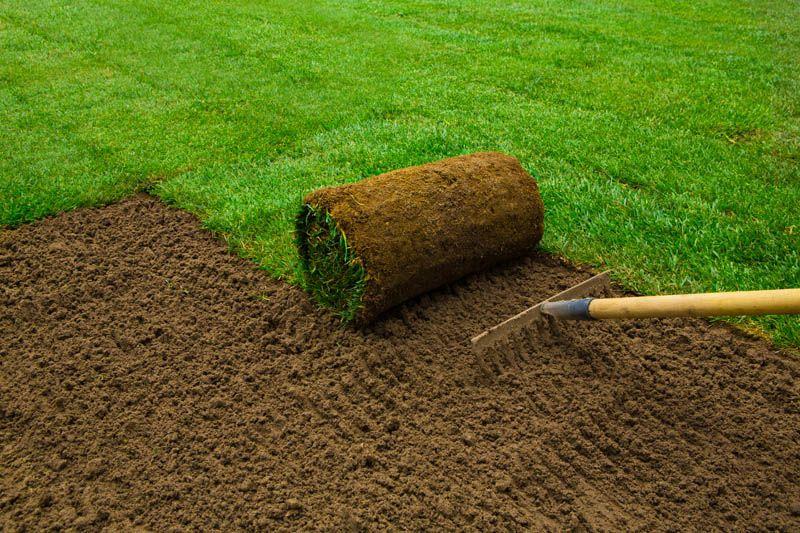 Preparing Soil for Sod in Colorado