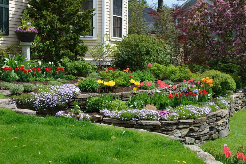 How to Add Color to Landscaping