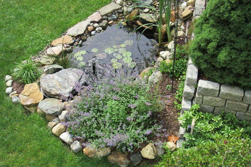Pond Landscaping Ideas