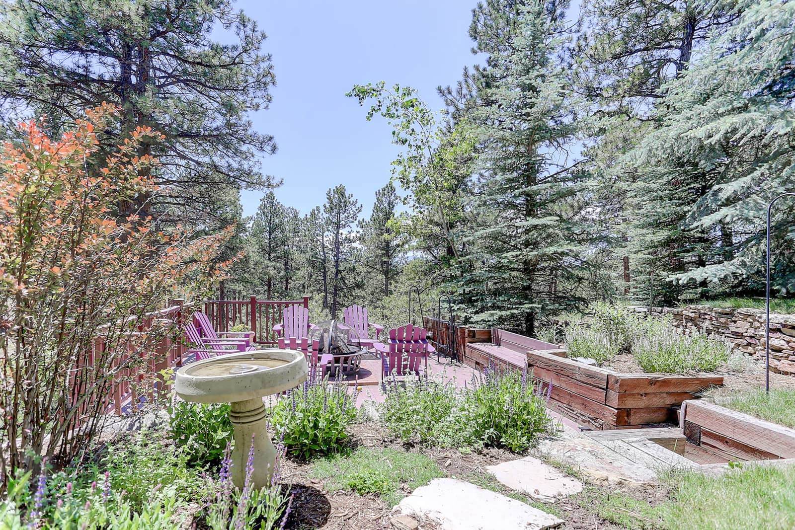 Colorado Springs Xeriscape Plants