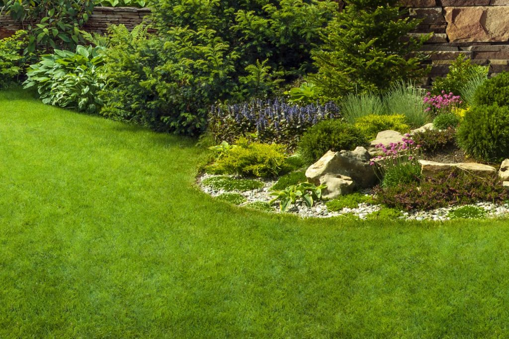 What do Landscapers do for Spring Cleanup?
